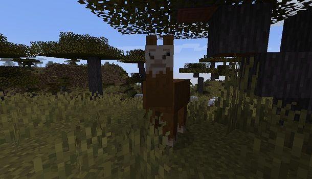 Lama su Minecraft