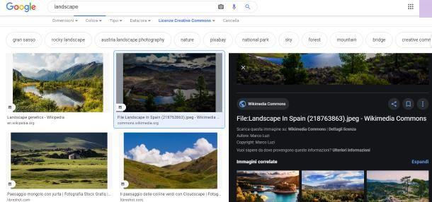Come trovare immagini senza copyright su Google