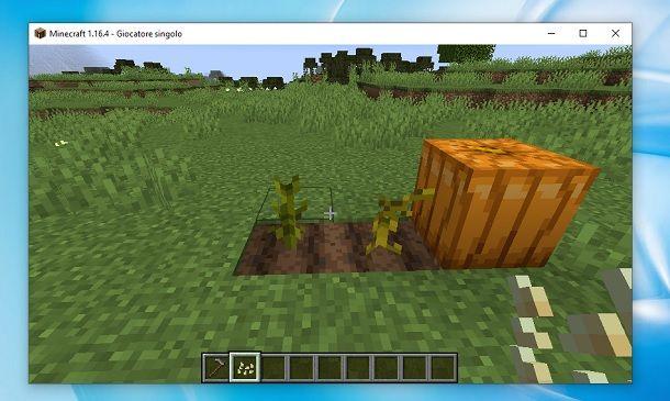 Zucca Minecraft