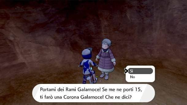 I rami Galarnoce nelle Grotte fragormare