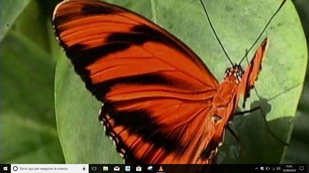 Sfondo animato desktop