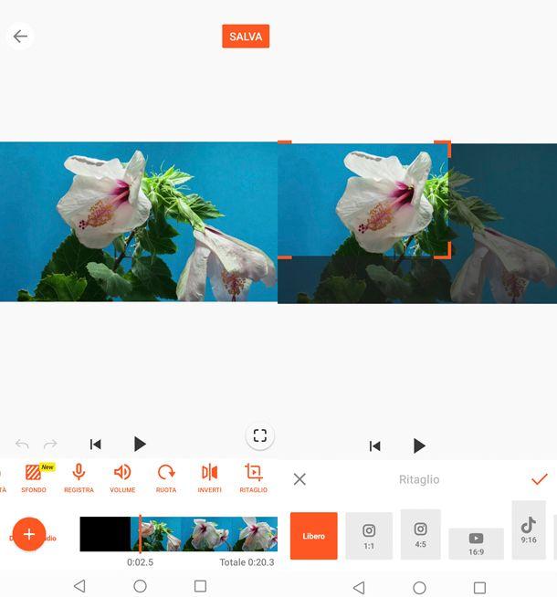 Come ritagliare l'immagine di un video con YouCut