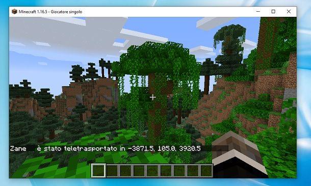 Teletrasporto Giungla Minecraft