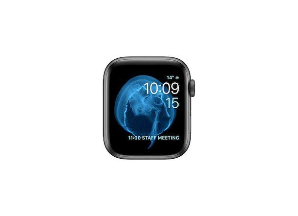 Quadrante Apple Watch Animazione