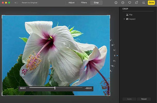 Come tagliare l'immagine di un video con Foto del Mac