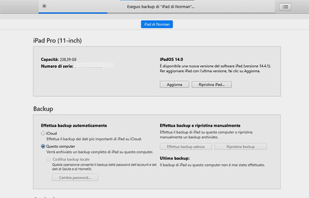 backup di iPad