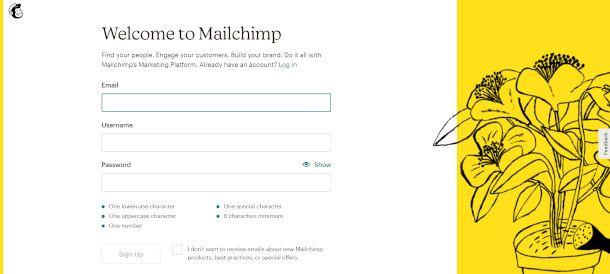 schermata di benvenuto MailChimp