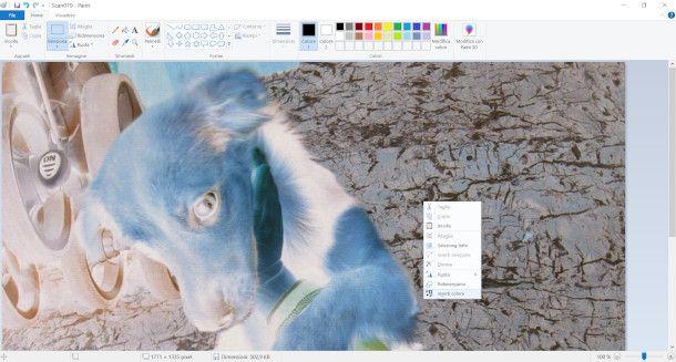 paint screenshot inversione colori