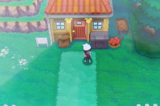 Casa di Bacco Bacchini Pokémon Rubino Omega