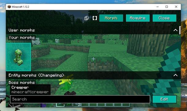 Trasformarsi in Minecraft