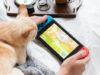 Come pescare su Animal Crossing