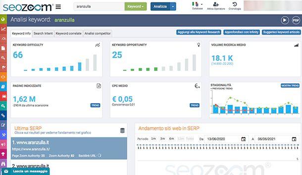 Come gestire un sito Web usando SeoZoom