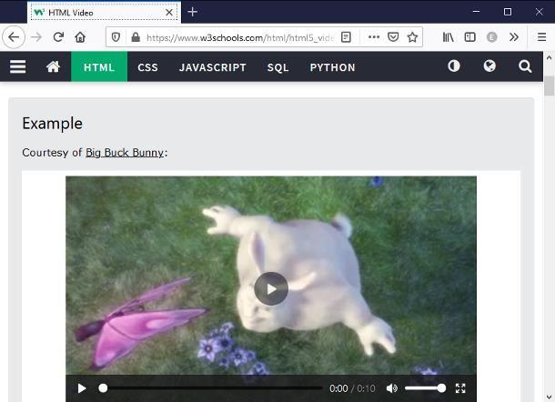 Come sostituire Flash Player su Firefox