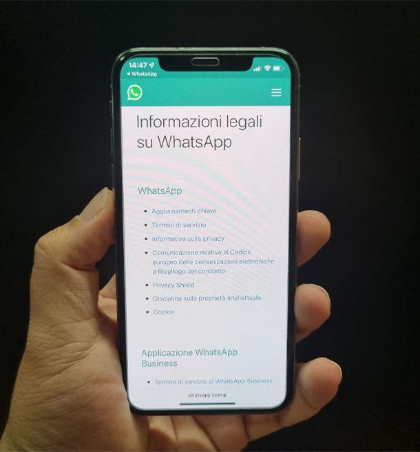 termini e informazioni sulla privacy di WhatsApp