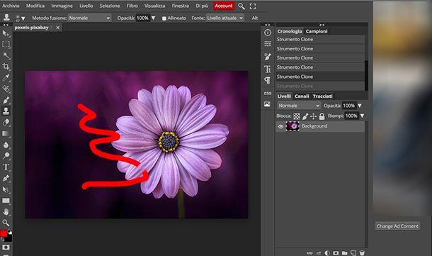 Come togliere scarabocchi dalle foto con Photopea