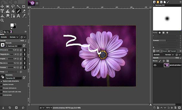 Come togliere scarabocchi dalle foto con GIMP