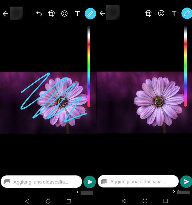 Come togliere scarabocchi dalle foto con WhatsApp
