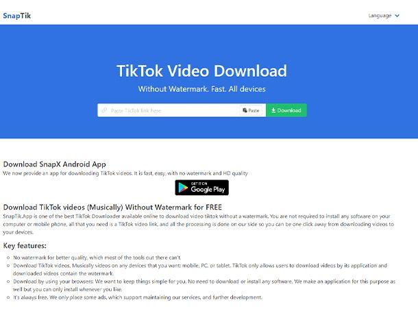 Salvare video TikTok senza logo su PC