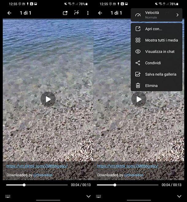 Salvare video TikTok senza logo con Telegram