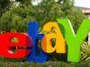 Come cercare un venditore su eBay