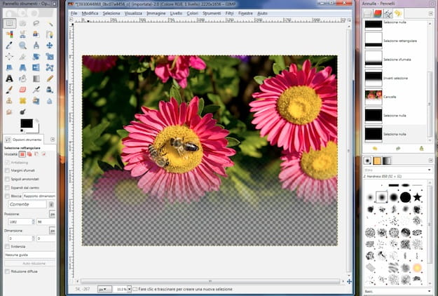 Sfumare con GIMP