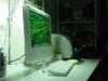 Come ridimensionare una foto con Mac