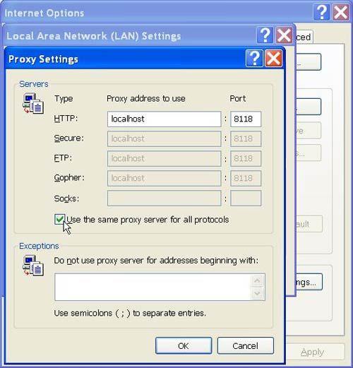 Tor e Internet Explorer